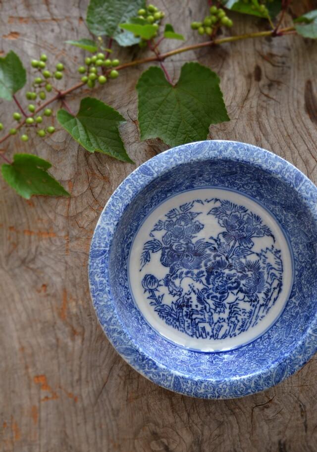 染付印判獅子牡丹紋鉢 直径212mm